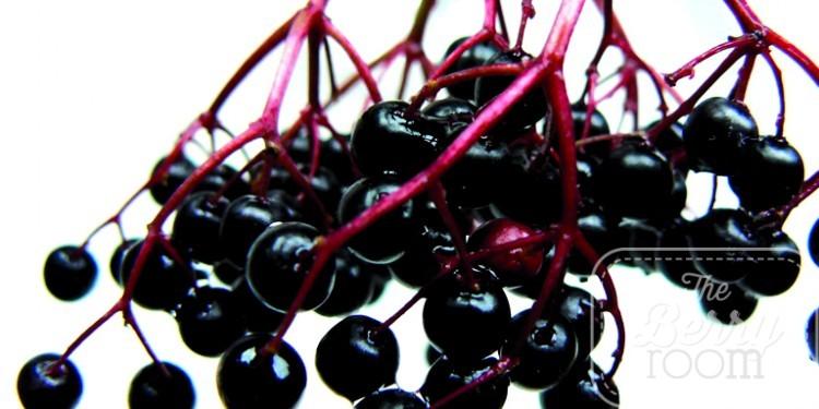 Iprona AG, BerryPharma, Elderberry, Holunder, anthocyanins