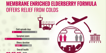 Elderberry Long Haul Flight Infographic