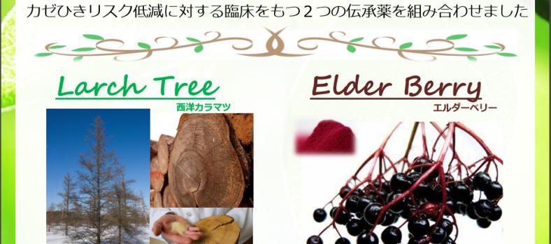Elderberry formula
